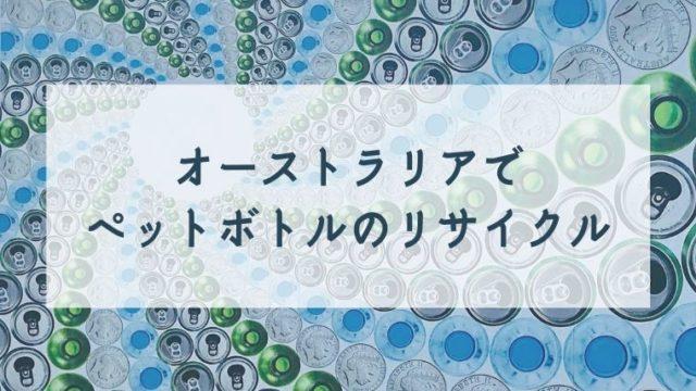 リサイクルボトルが並んでいる写真