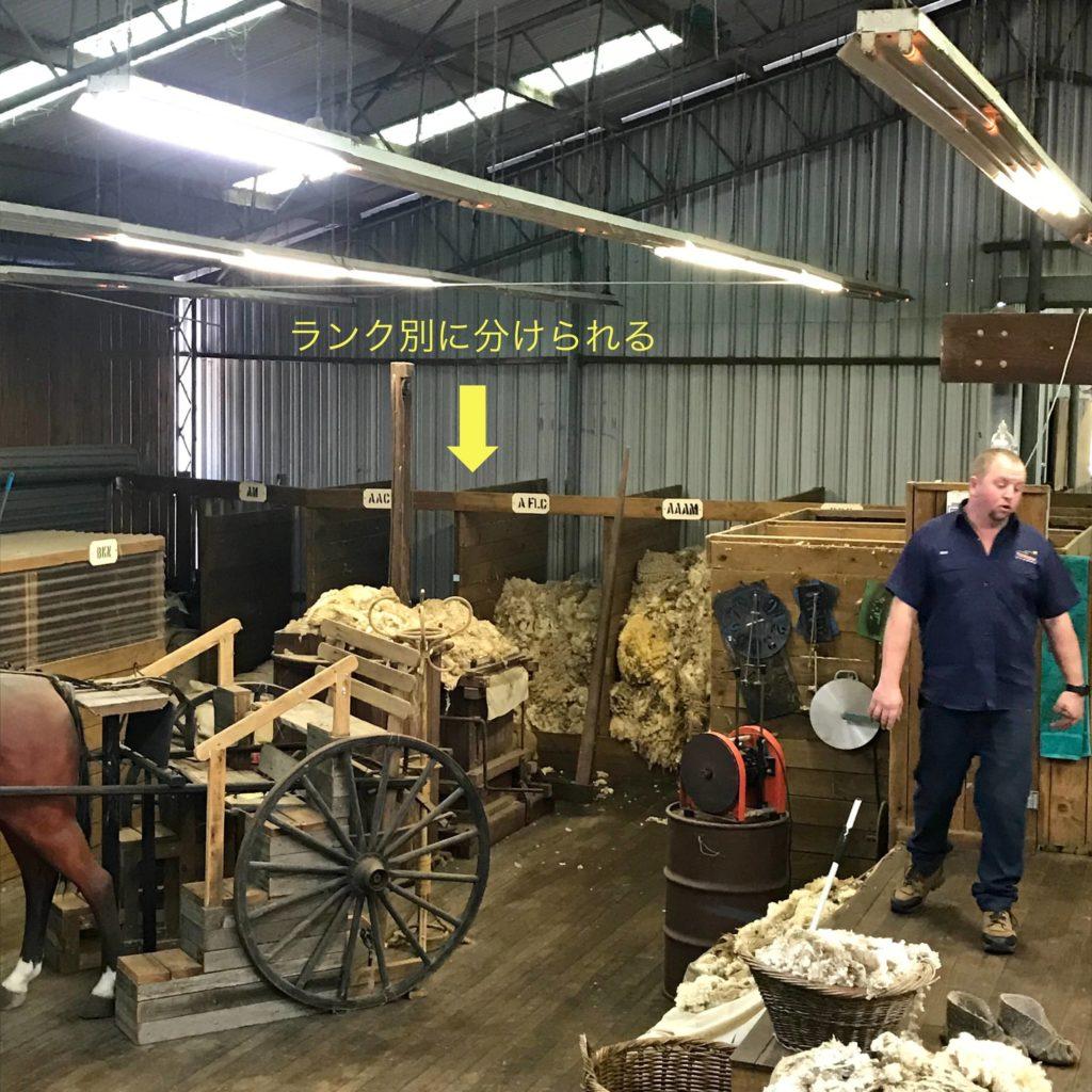 羊の毛が収納されている倉庫