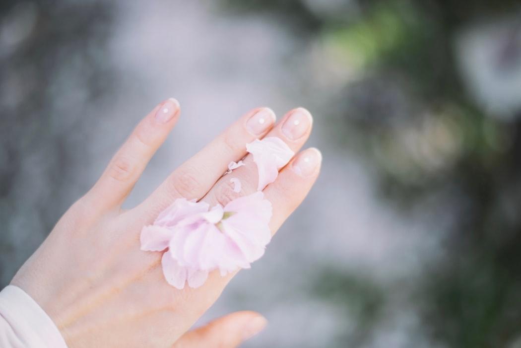 手のひらに乗る花びら