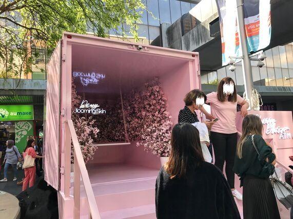 ピンクのトラックに桜のバックグランド
