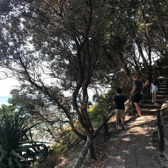 木々の中にある階段を上る人たち