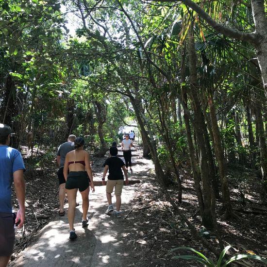 林の中を歩く人たち