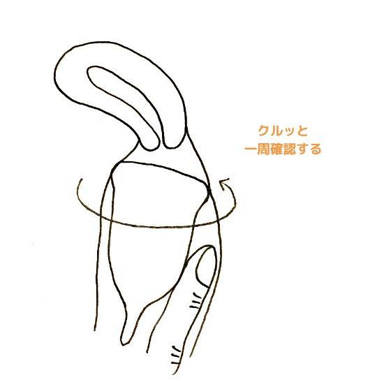 月経カップ