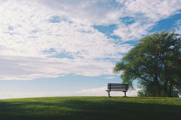 芝生の上にあるベンチ